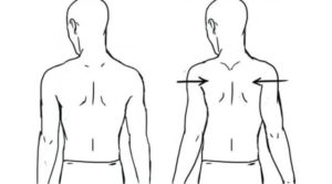 What is scapular retraction? Why is it important? - Body Technologies